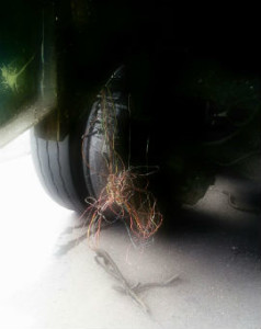 exploded tire 2